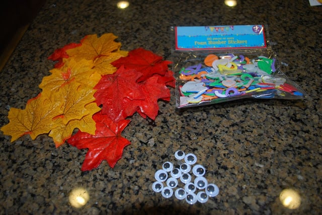 supplies for fall crafts