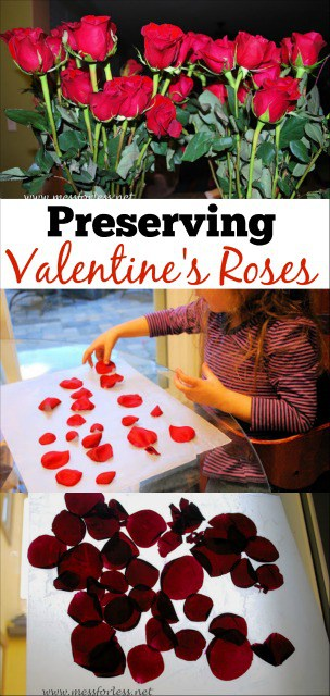 Preserving Valentine's flowers so that you can enjoy them longer. This is a great project to do with kids.