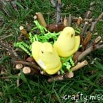 Recycled Nest Craft – Guest Post from Crafty Mischief