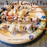 Food Fun Friday: Yogurt Covered Berries on a Stick