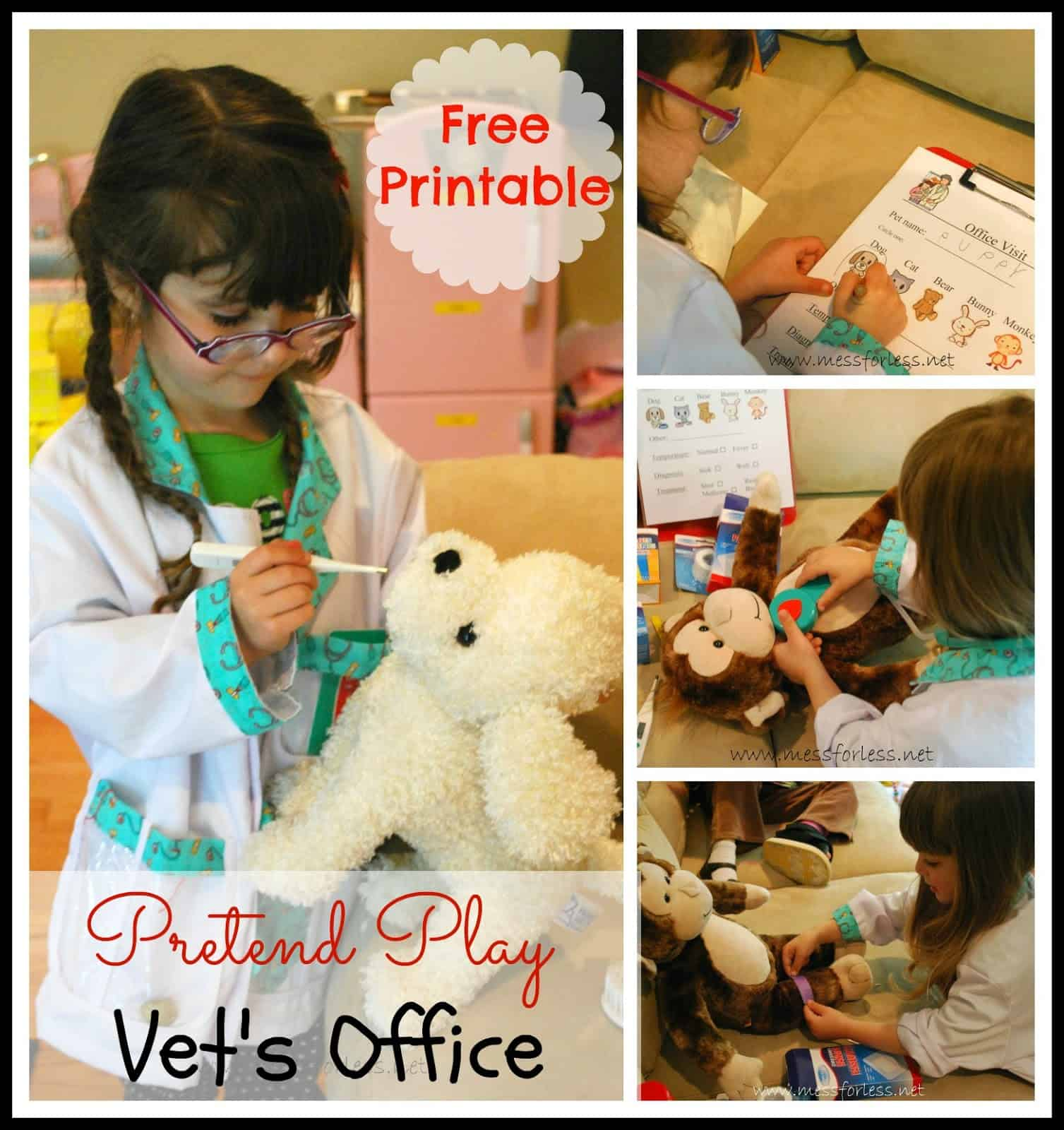 Pretend Play - Vet's Office with Free Printable - Mess for ...