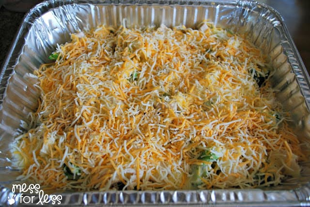 Cheesy Chicken and Broccoli Casserole - Mess for Less