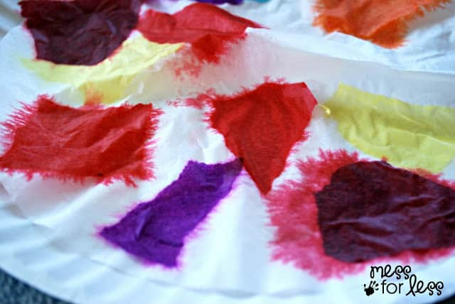 colorful coffee filter