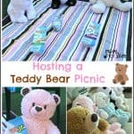 Hosting a Teddy Bear Picnic with Lunchables Jr.