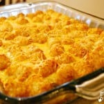 Tater Tot Casserole - Food Fun Friday