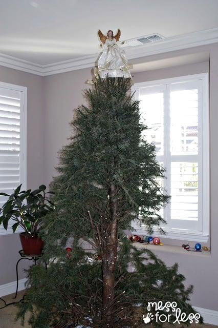 dead Christmas tree #Motherfunny #shop
