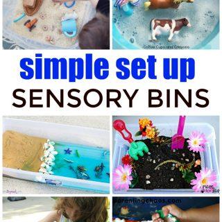Simple Sensory Bin Ideas