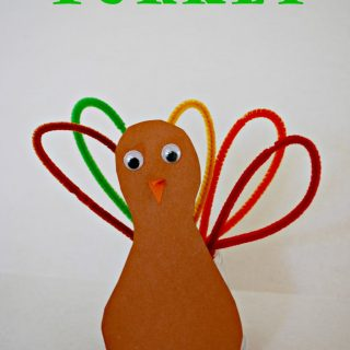 Thanksgiving Crafts for Kids: Pipe Cleaner Turkey