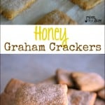 Honey Graham Cracker Recipe – Food Fun Friday