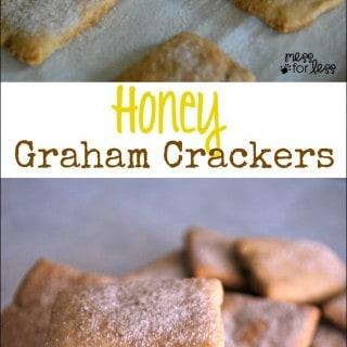 Honey Graham Cracker Recipe – Food Fun Friday