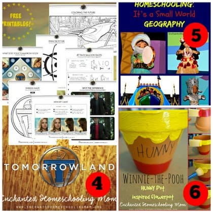 Disney world trip collage