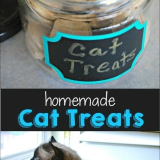 Homemade Cat Treats Recipe