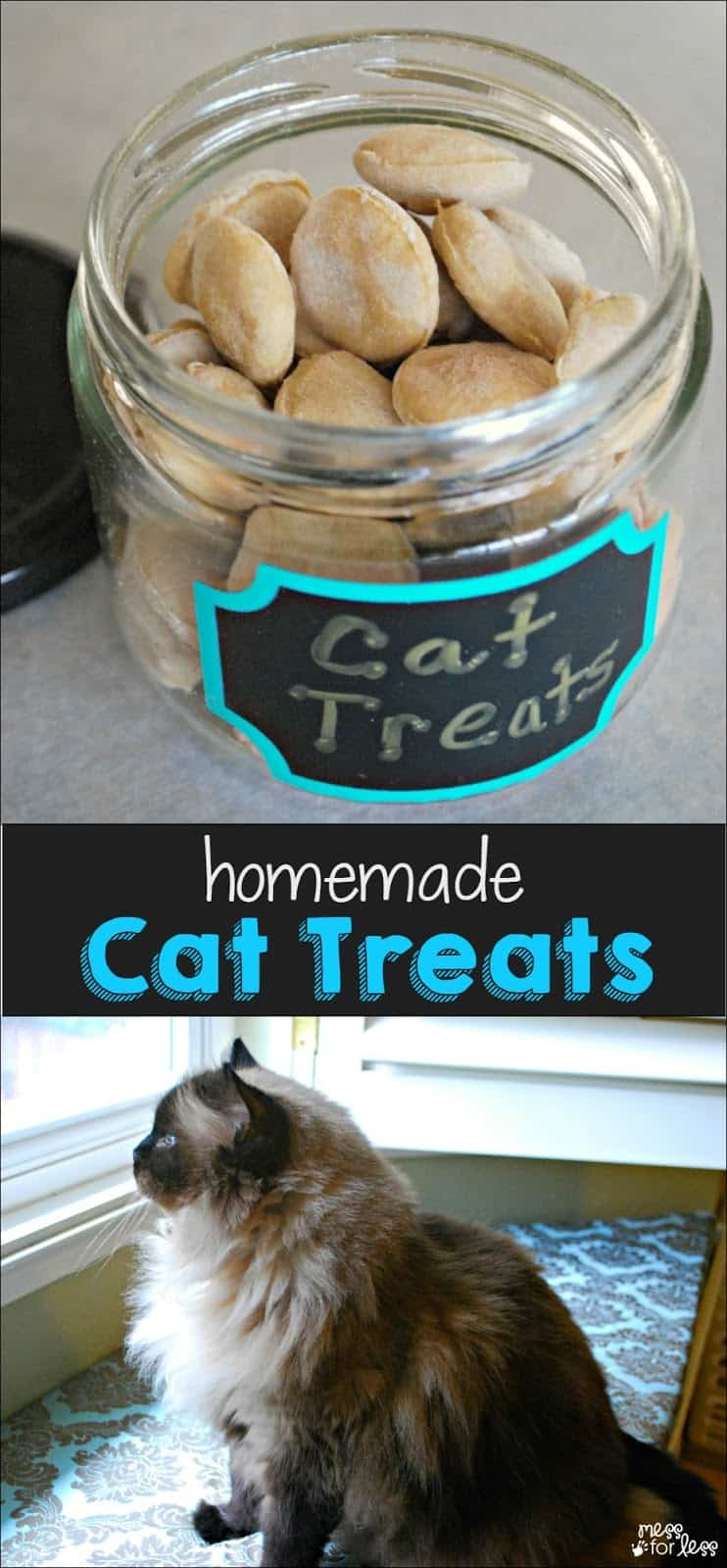 Home Made Cat Food Recipe For Cat