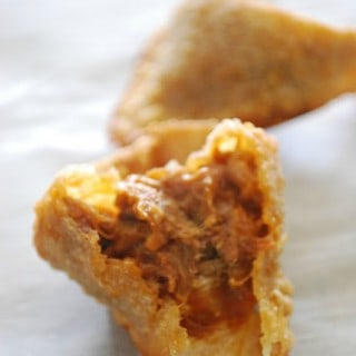 Pulled Pork BBQ Fried Wonton Recipe