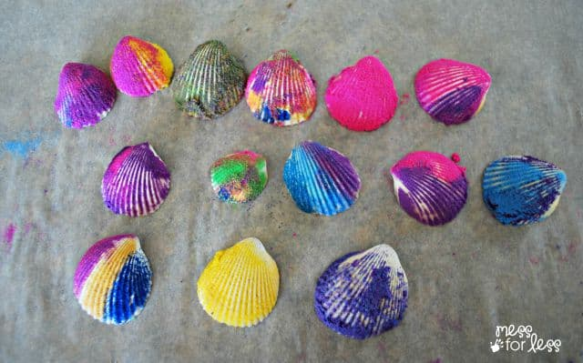 sea shell decorating