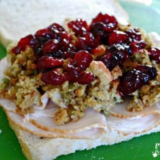 Turkey, Stuffing and Cranberry Sauce Sandwich