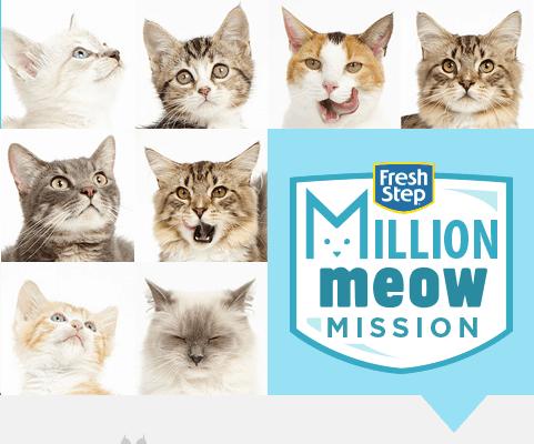 MillionMeowMission AD
