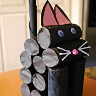 Helping Shelter Cats Plus a Cat Craft