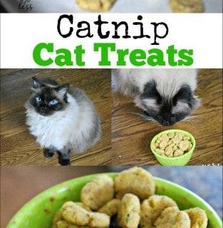 Catnip Cat Treats Recipe