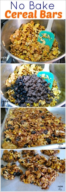 no bake cereal bars with blueberries and chocolate
