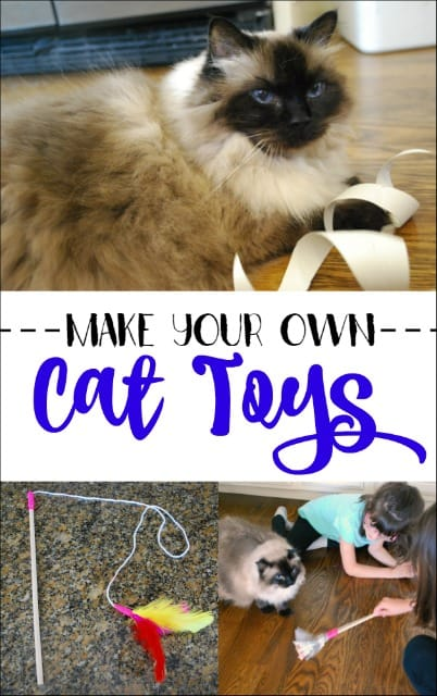 Want to entertain your cat but don't want to spend lots on cat toys? Find out how easy it is to make DIY cat toys. My kids were even able to make them. WelcomeHomeKitty AD