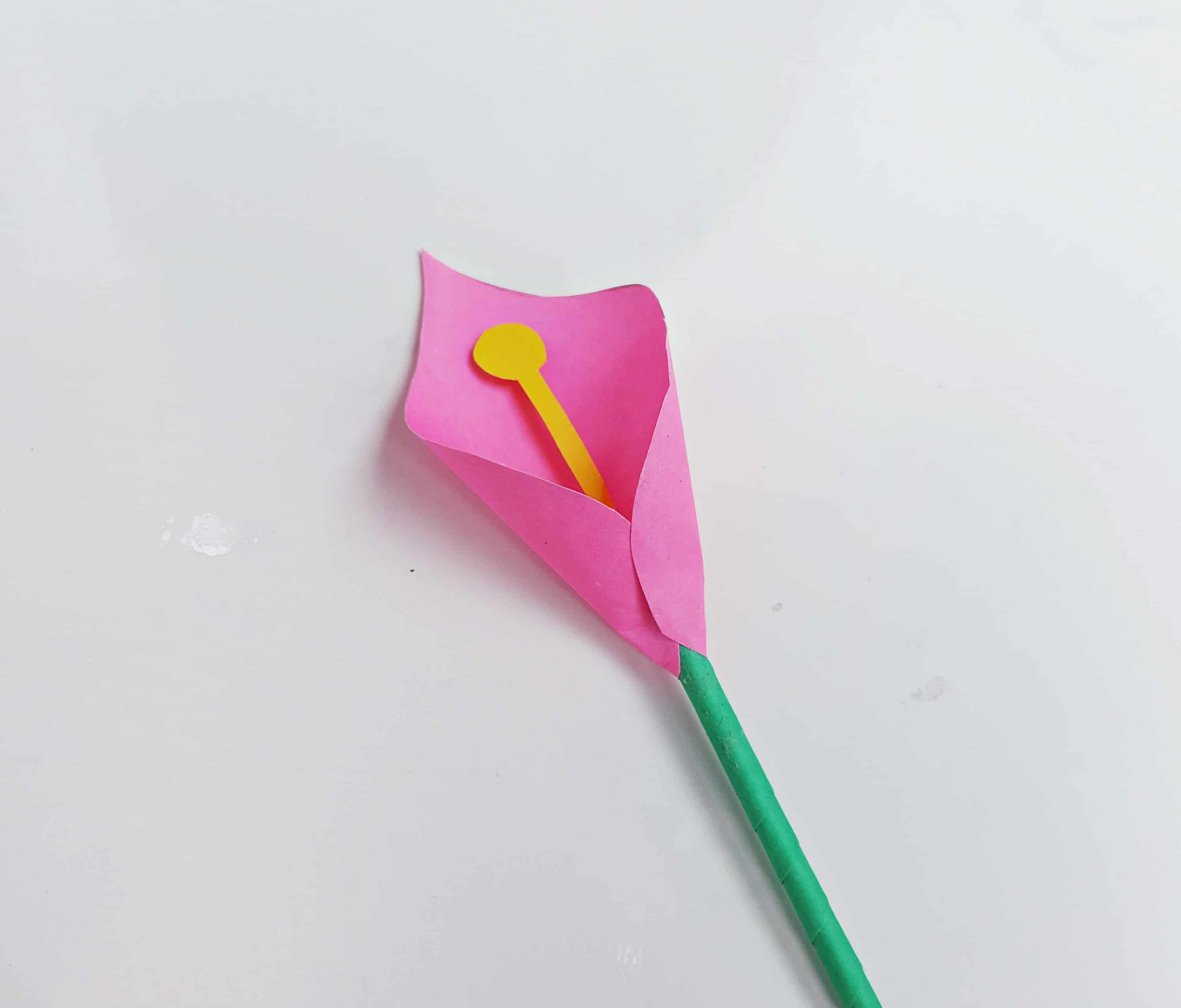 calla lily flower paper craft