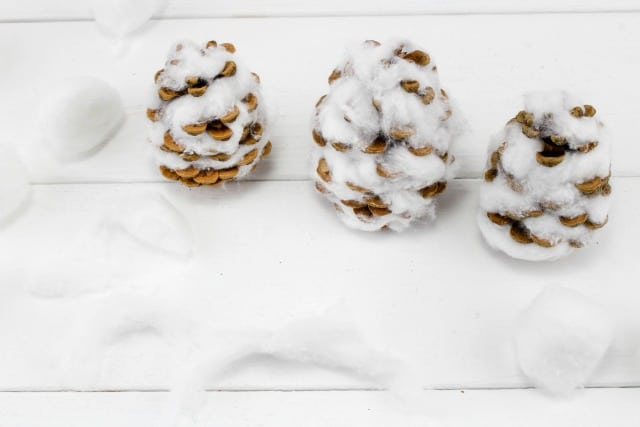 pinecones covered with cotton