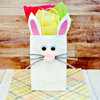 How to Make an Easter Bunny Gift Bag