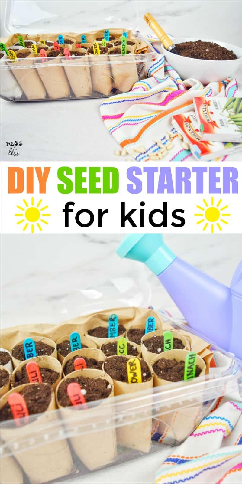 DIY Seed Starter for Kids