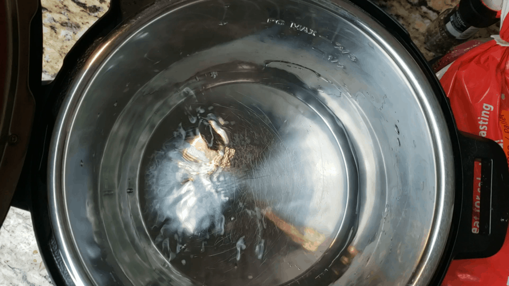instant pot with water